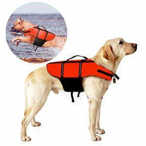 svømmevest hund